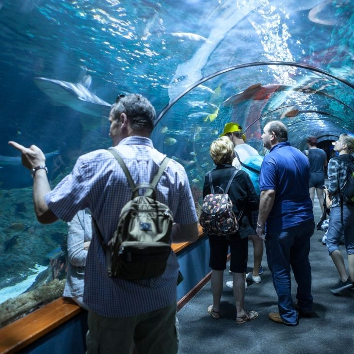 Bouncing Back from The Pandemic: A Guide for Visitor Attractions